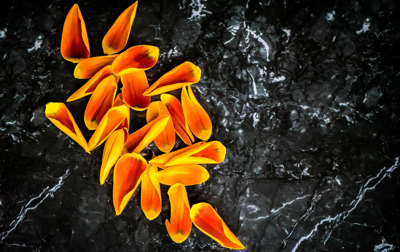 Spring Awakening Beauty Editorial Vanja Pandurevic FAB L'Style